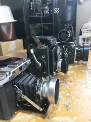 勿論フードは付けている撮影カメラ群