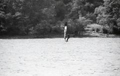 湖面を飛んでいた!