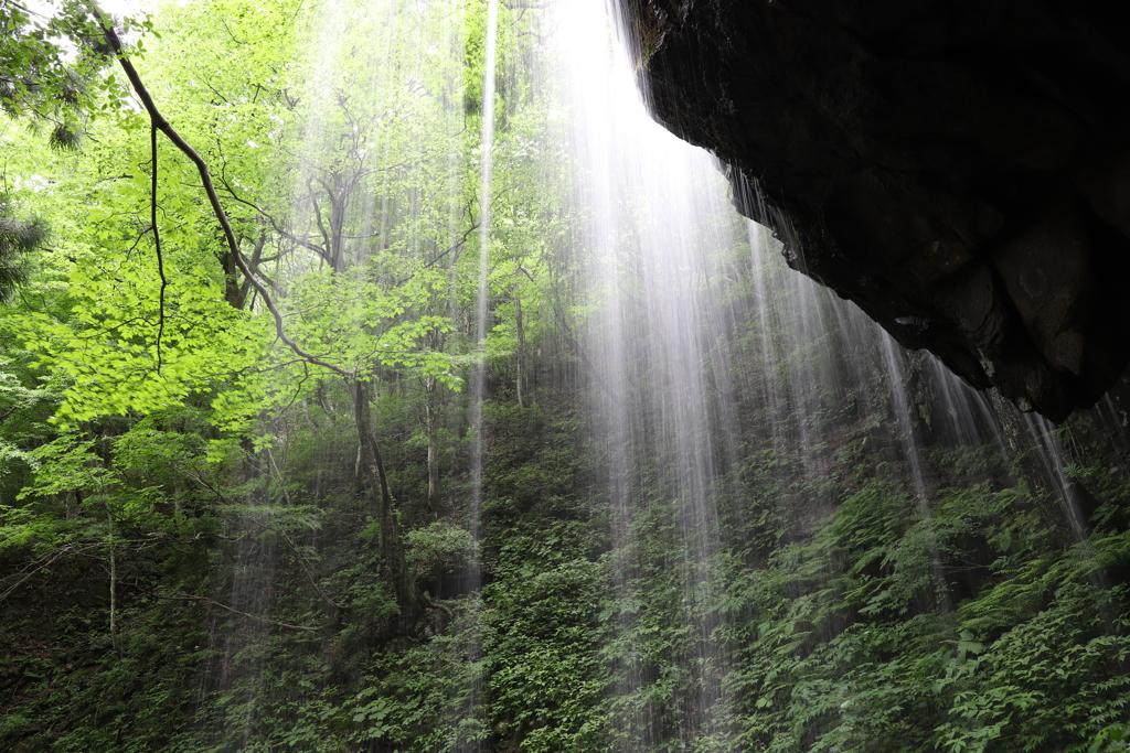 岩井滝のカーテン