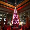 Marunouchi Bright Christmas 2017