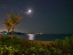月夜のビーチ