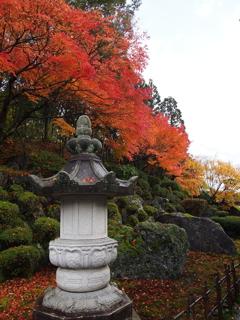 ゆの国の森紅葉