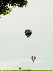 緑に浮かぶ。空に浮かぶ。