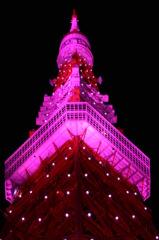 電波塔(Pink Light ver)
