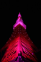 夜空にそびえる (TOKYO Tower Pink Light ver)