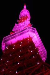 ピンクの展望台