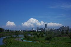 新横浜から夏便り