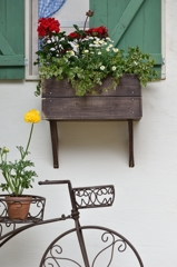 Window of flower beds