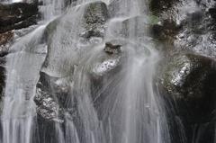 ゴリラが潜む滝