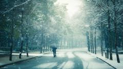 Ephemeral Snow