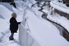 雪の中に見る「春」