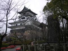 犬山城と四季桜