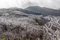 Silver Mt