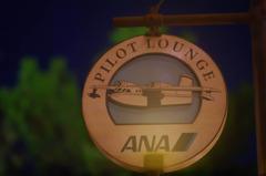 ana pilot-lounge