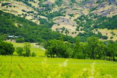 napa valley2