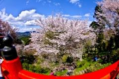 NARA-Yoshino
