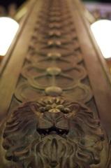 lion-line