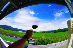 opus one winery5