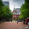 曇天にくすむ赤れんが庁舎