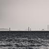 対岸の風車を見る