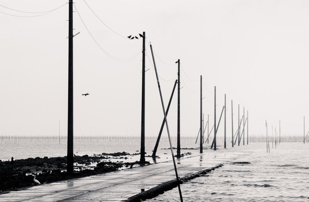 降る雨も海に消える