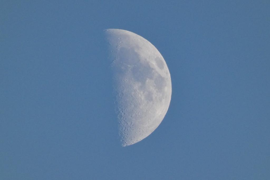 梅雨明け後の夕方の月(1)