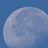 朝の月(ズーム)