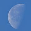 立春後の朝の月