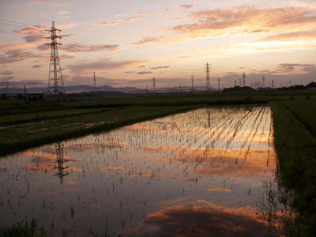 東松山の夕日と送電鉄塔1