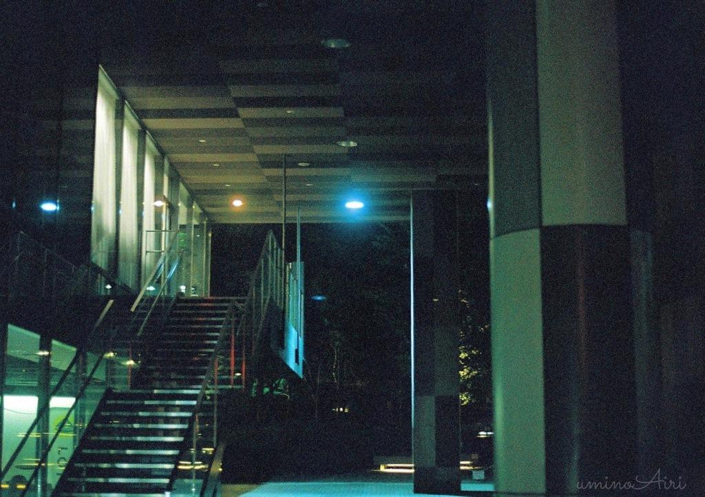 夜の散歩にて