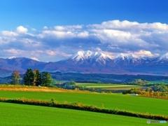 輝く秋麗の丘