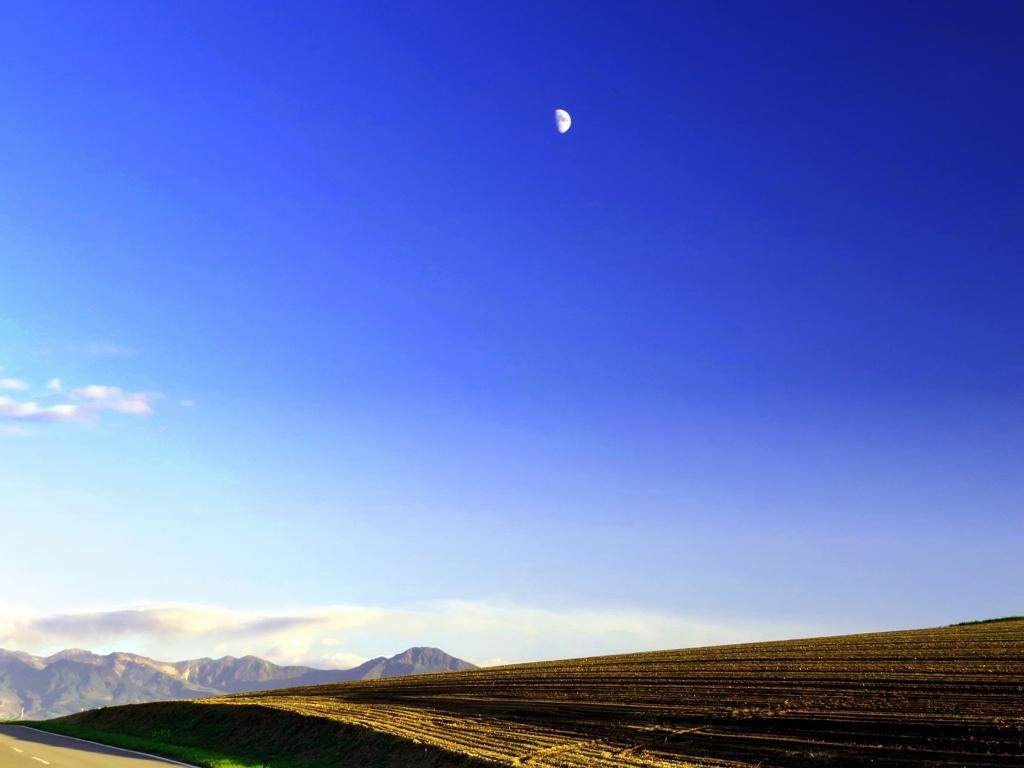 落陽する丘の月