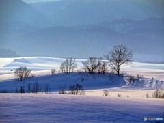 雪原のソナタ