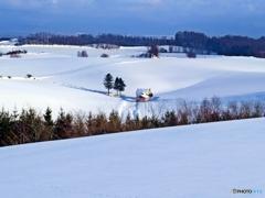 雪原の赤い屋根の小屋