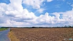 風と雲の丘