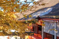 英彦山神宮 6