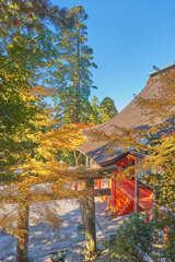 英彦山神宮 7