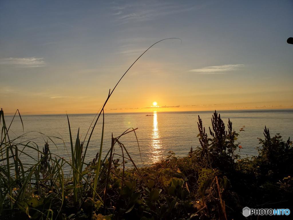 晩夏の朝陽