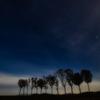 星空とはさ木