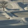 雪の中の棚池
