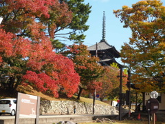 奈良興福寺入り口