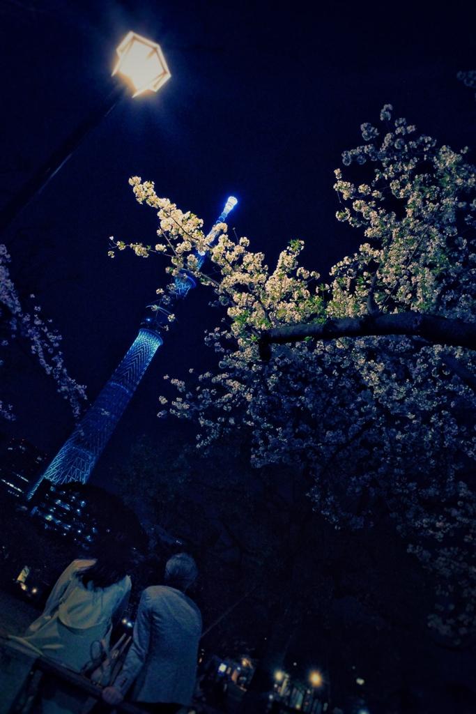 """""""恋"""" ✿*❀٭夜の風"""