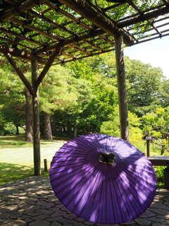 和傘~庭園にて