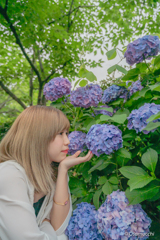 紫陽花と黒澤愛吏さん
