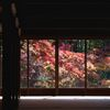 天寿庵の秋