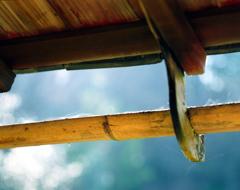 冬の詩仙堂 樋のポートレート