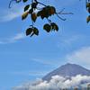 初秋、富士山