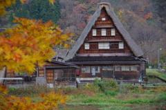 秋の五箇山