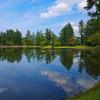 お盆の頃の池