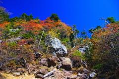 赤石山山頂付近